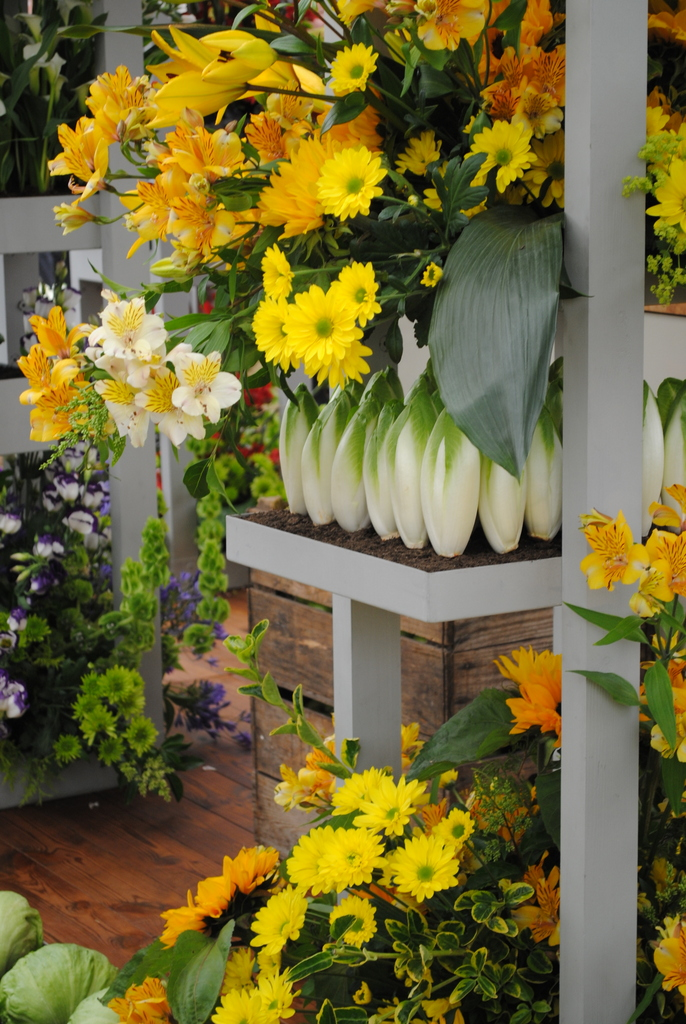 Waitrose Show Garden, Hampton Court Flower Show 2012