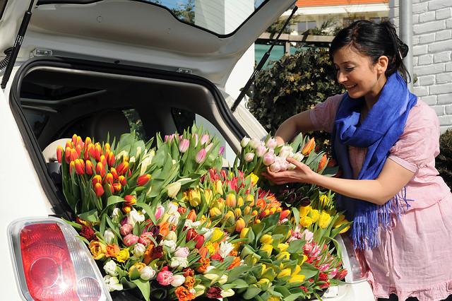 Jak przedłużyć życie kwiatów ciętych