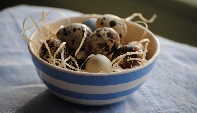 Wielkanocne dary przepiórki