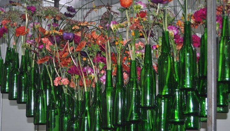 Gardenia 2012