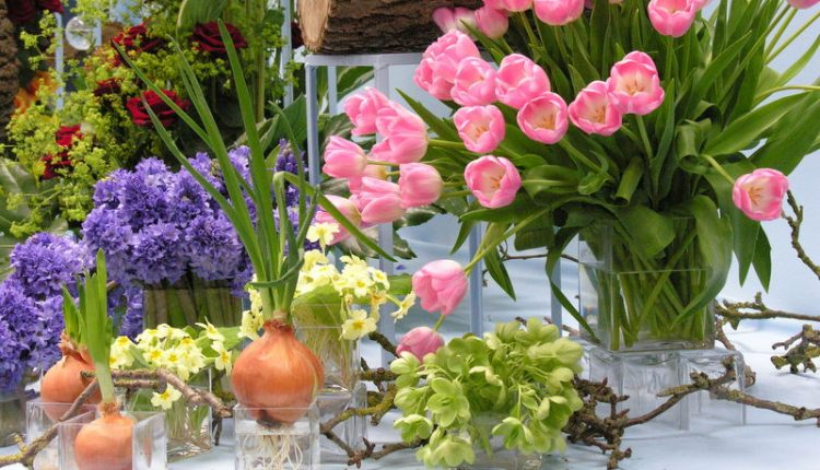 Wiosenne kompozycje kwiatowe