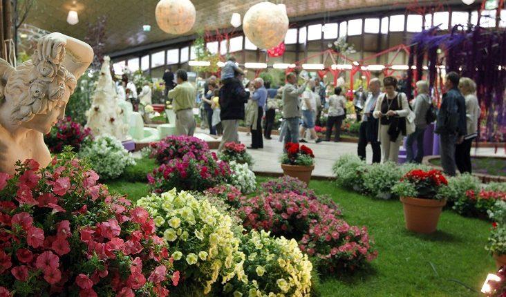 Międzynarodowa Wystawa Kwiatów w Chorzowie