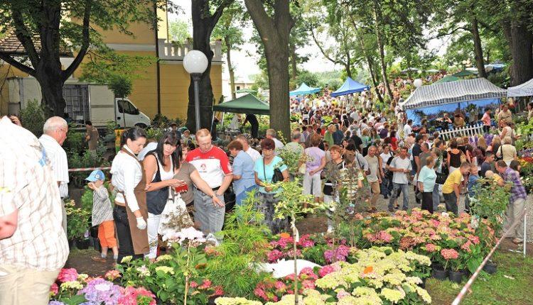 40-ste Lato Kwiatów w Otmuchowie, 29.06. – 1.07.2012r.