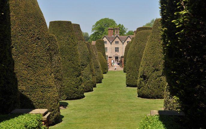 Packwood House, Ogród Cisowy, Wielka Brytania