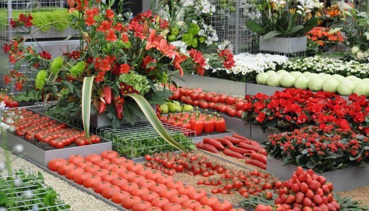 Warzywne szaleństwo na Chelsea Flower Show 2013