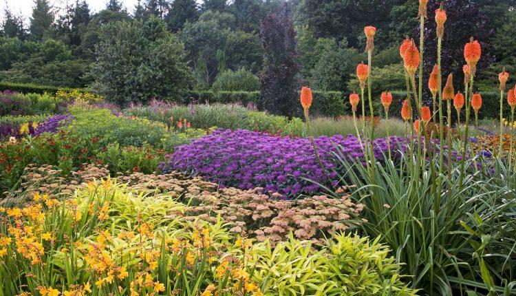 Romantyczne ogrody w Rosemoor