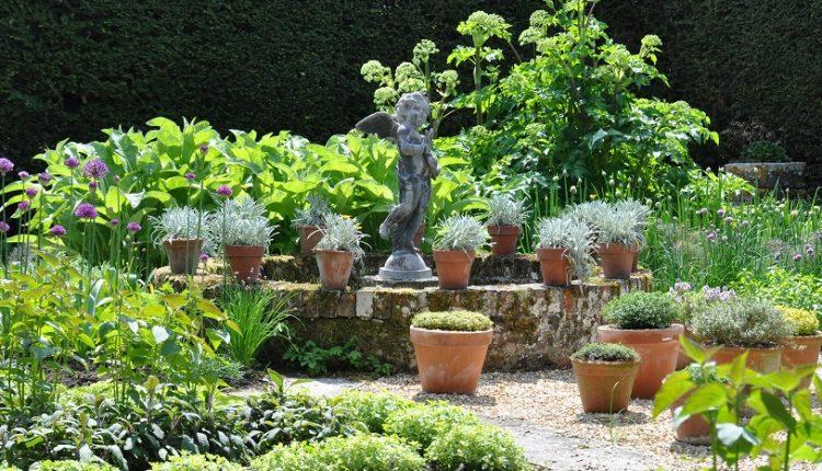 Ogród ziołowy  – to brzmi dumnie