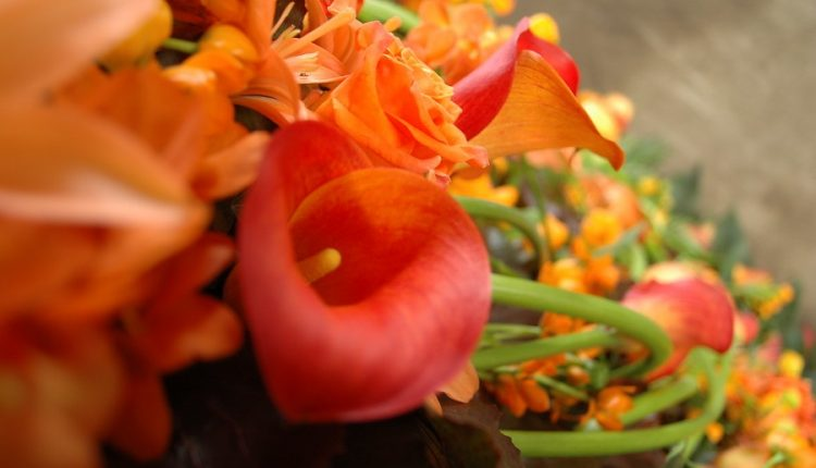 Oranżowy Królewski Dzień w Holandii