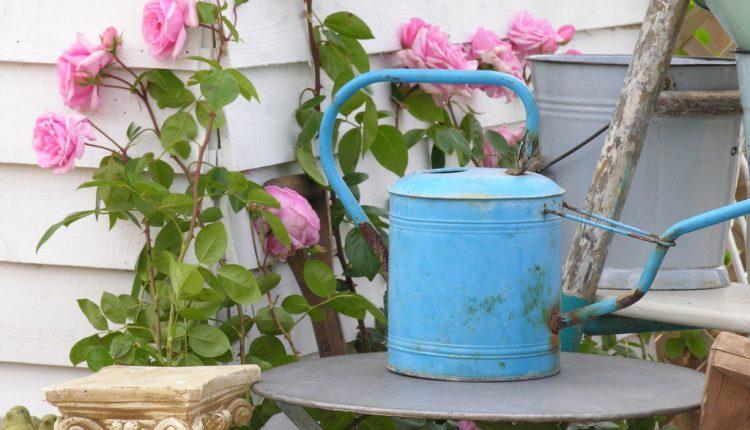 Zaproś różowy kolor do swojego domu i ogrodu