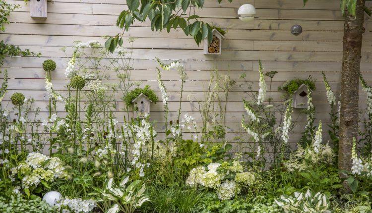 Hampton Court Palace Flower Show 2015