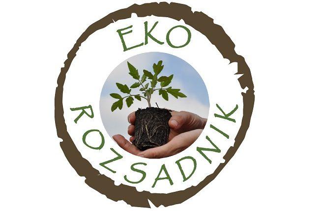 Tworzymy EKO-ROZSADNIK zielonych pomysłów
