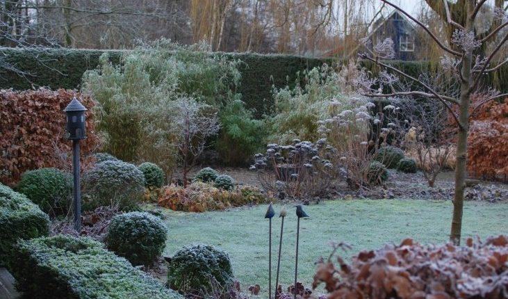 Zimowy ogród Marii w Szwecji