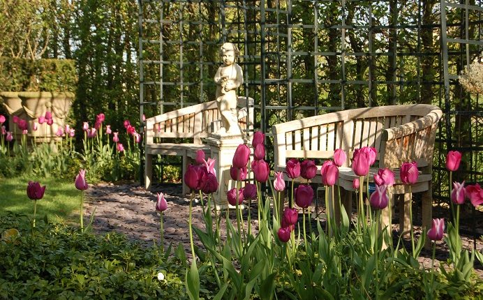 Ogród praktyczny i elegancki