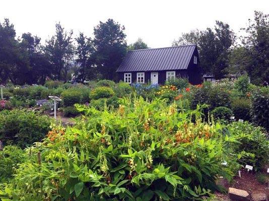 Ogród w Akureyri