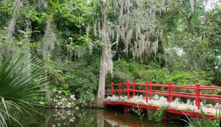 "Ogrody plantacji ""Magnolia"""