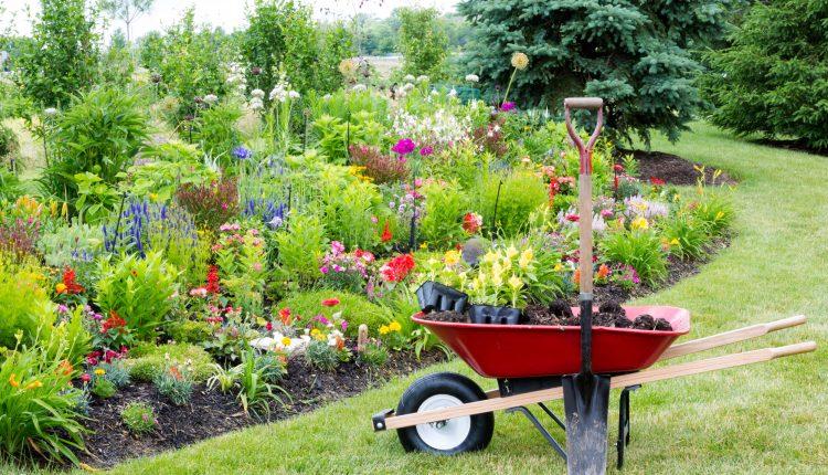 ABC narzędzi w ogrodzie – zestaw podstawowy i zaawansowany