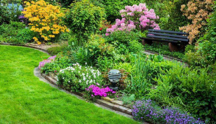 Jak założyć ogród? Poradnik krok po kroku.