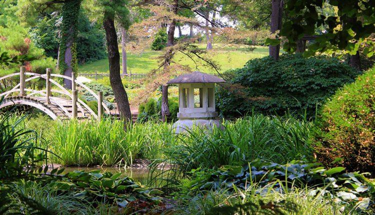 Nowoczesna odsłona klasycznego Orientu. Jak urządzić piękny i funkcjonalny ogród w stylu japońskim?