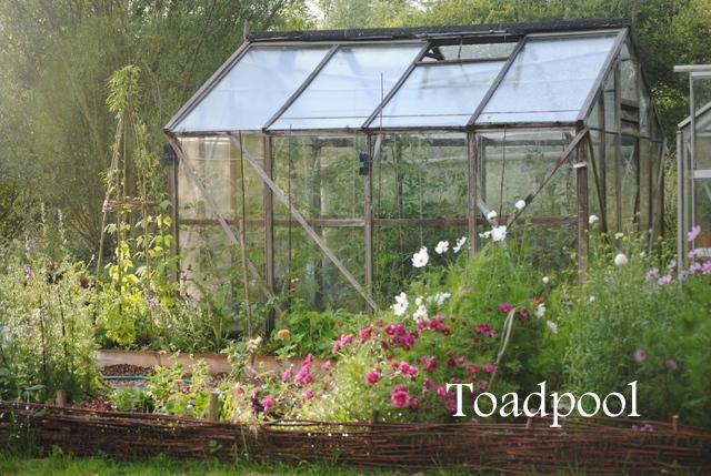 Ogród warzywny No-Dig