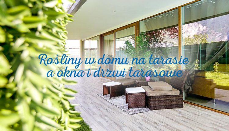 Rośliny w domu i na tarasie a okna i drzwi tarasowe