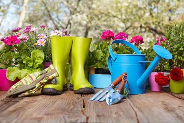 Jak zrobić swój własny ogród? 5 wskazówek