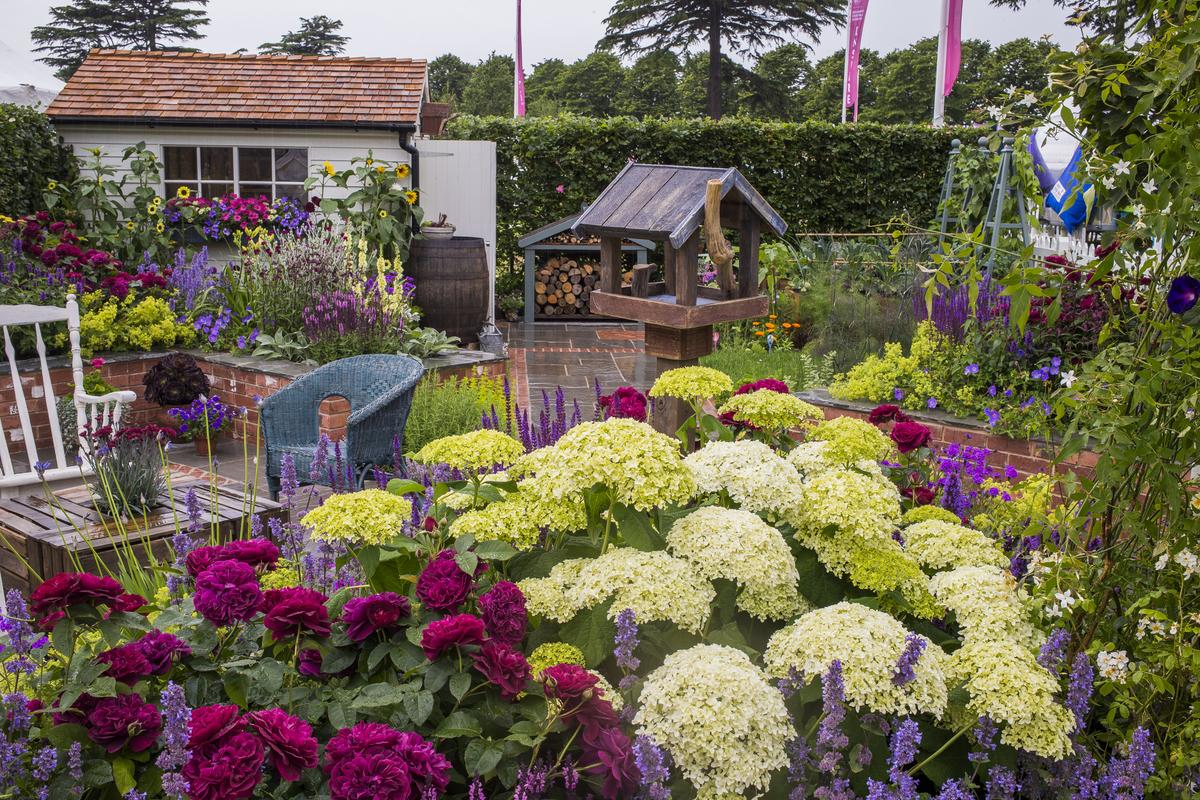 Hampton court palace flower show 2015 - Hampton court flower show ...