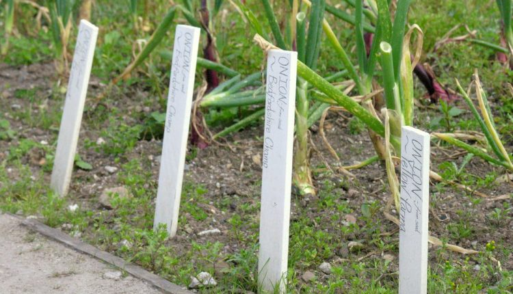 Etykiety do szklarni i ogrodu