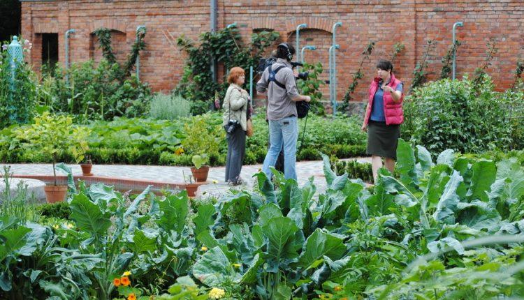 Maja w Ogrodzie w eko-warzywniku w stylu angielskim