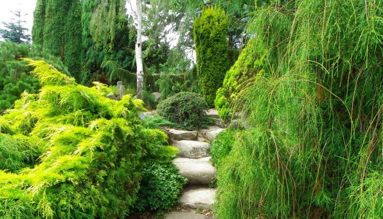 Hortulus znaczy ogródek