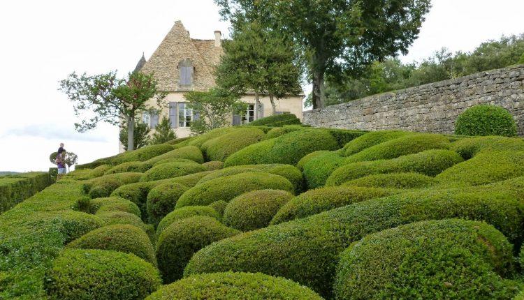 Ogrody przy Château de Marqueyssac  nad rzeką Dordogne