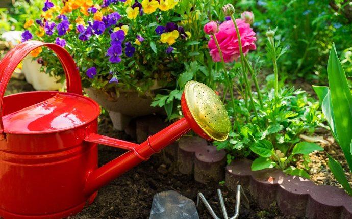 Lato już wkrótce zawita w Twoim ogrodzie