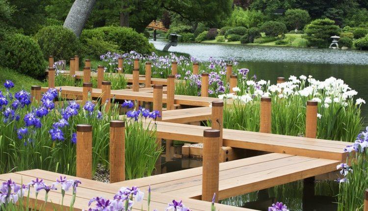 Ogród Botaniczny w Missouri