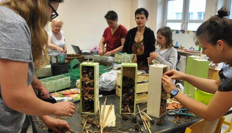 Jak zbudować domek dla owadów