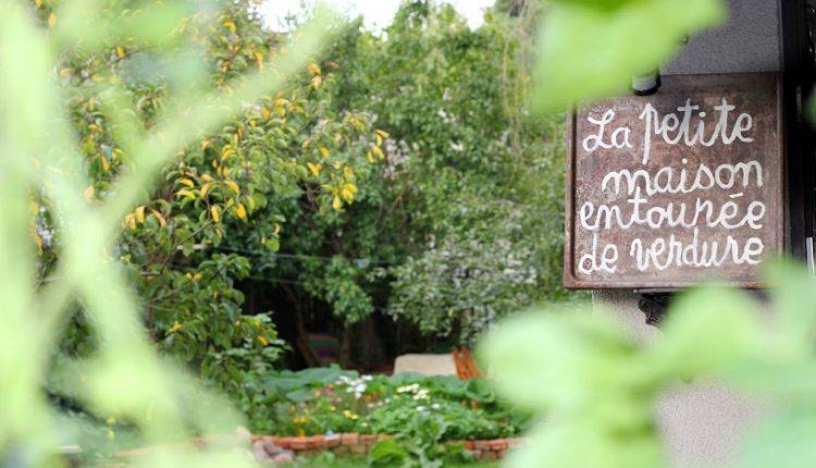 Mały domek w zieleni