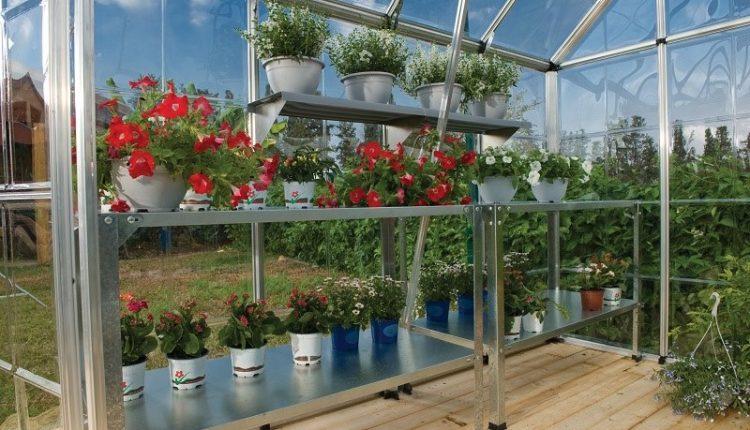 Jak rozwinąć swoje ogrodnicze hobby ze szklarnią ogrodową.