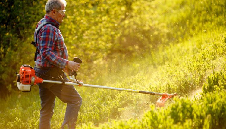 W jakim ogrodzie przyda się podkaszarka spalinowa?